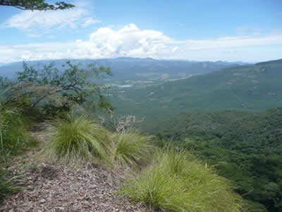 View across Burma valley from Bvumba Forest